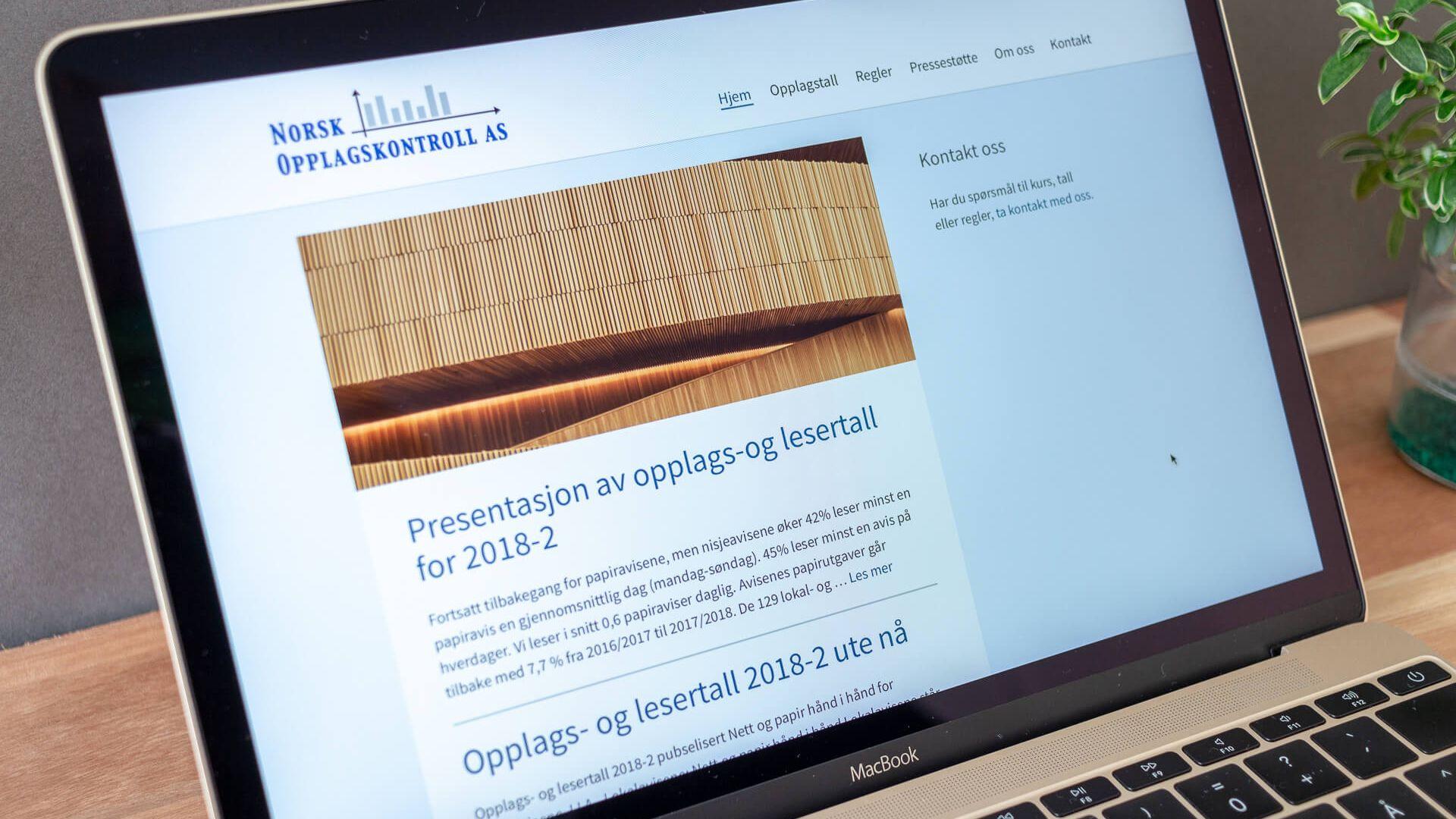 Imagem da página inicial do website